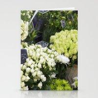 Premium Roses Stationery Cards