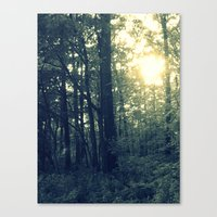Dual Nature Canvas Print