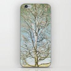 Tree 5 iPhone & iPod Skin