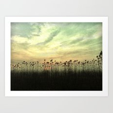 Into the sunset Art Print