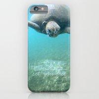 Free Turtle  iPhone 6 Slim Case