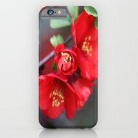 Chaenomeles  - JUSTART �… iPhone 6 Slim Case