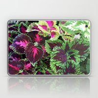 Tropical Forest Laptop & iPad Skin