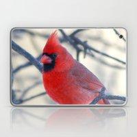 Male Northern Cardinal Laptop & iPad Skin