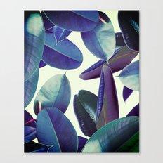Elastica Amaro #society6 #decor #buyart Canvas Print