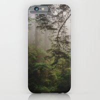 iPhone & iPod Case featuring Foggy Forest by Kevin Russ