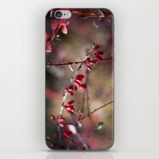 Rose Hip Color iPhone & iPod Skin