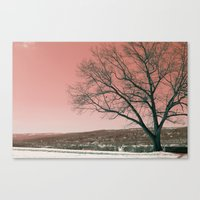 Sunset Park photo landscape Canvas Print