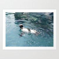 Penguin Takes a Dip Art Print