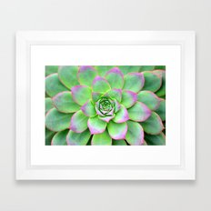 The Longest Bloom Framed Art Print