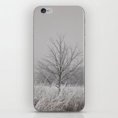 Wintered iPhone & iPod Skin