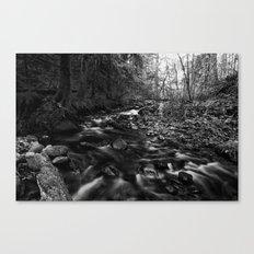 Oregon Stream in Black & White Canvas Print