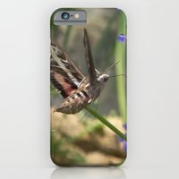 iPhone & iPod Case featuring Hummingbird Moth by TaLins