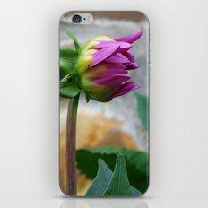 flor iPhone & iPod Skin