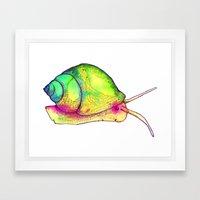 Watercolor Snail Framed Art Print