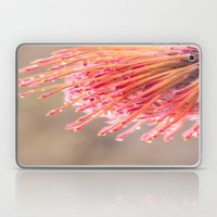 Hakea Flower 1 Laptop & iPad Skin