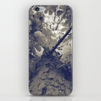 Up III iPhone & iPod Skin