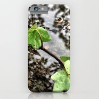 iPhone & iPod Case featuring Water, leaves, and the reflection of trees. by John Martino