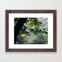 In The Shadow Of The Oa… Framed Art Print