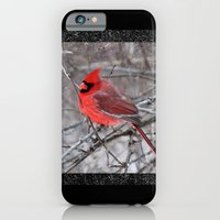The Snow Cardinal iPhone 6 Slim Case