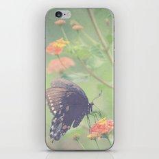 Captivating iPhone & iPod Skin