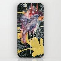 Bali Starling iPhone & iPod Skin