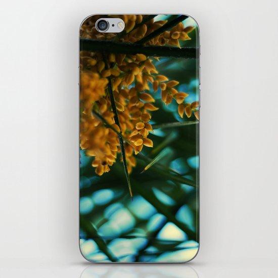 The Amazon. iPhone & iPod Skin