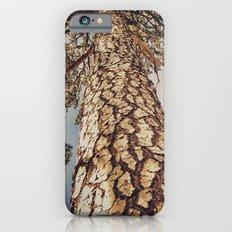 Tree 3 iPhone 6 Slim Case
