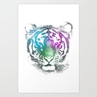 Eye Of The Tiger Art Print