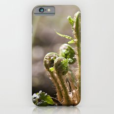 Young Ferns iPhone 6s Slim Case