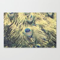 Peacock feathers photography blue green brown photography branches immortality royalty Canvas Print