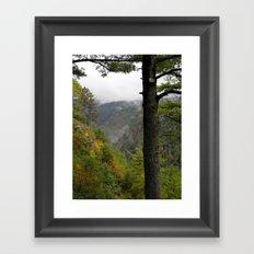 Pine Creek Gorge 2 Framed Art Print