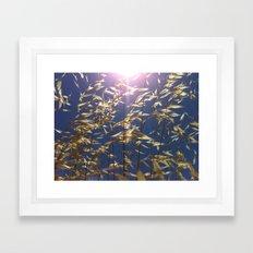 Unfiltered Framed Art Print