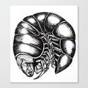 screaming centipede Canvas Print