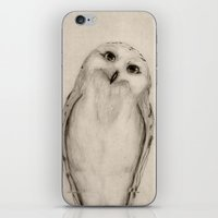 Snowy Owl Sketch iPhone & iPod Skin