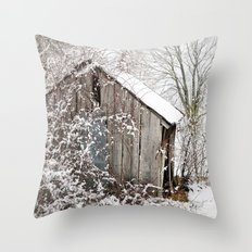 The Wooden Shed Throw Pillow