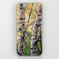 iPhone & iPod Skin featuring Birches A082 by S-Schukina