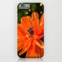 Orange Poppy iPhone 6 Slim Case