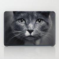 Les Yeux Du Chat iPad Case