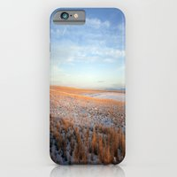 iPhone & iPod Case featuring Barren by Kim Ramage