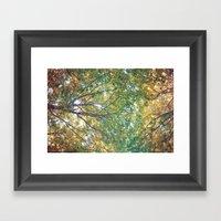 forest 014 Framed Art Print