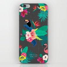 Tropical Birds iPhone & iPod Skin
