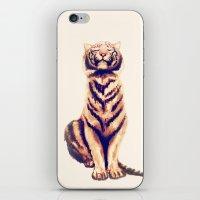 Zen Tiger  iPhone & iPod Skin