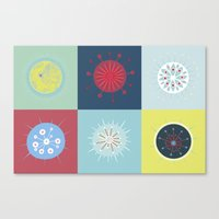 Radiolarian Composition Canvas Print