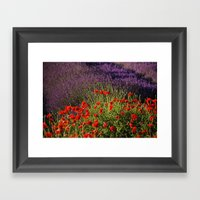 Lavender And Poppies, Ho… Framed Art Print