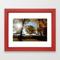 Autumnal sunshine Framed Art Print