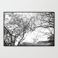 Untitle Canvas Print