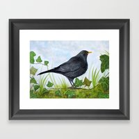 The Blackbird Framed Art Print