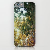 Forest 015 iPhone 6 Slim Case