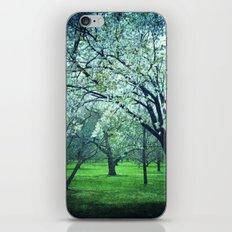 Ambrosial Sight iPhone & iPod Skin